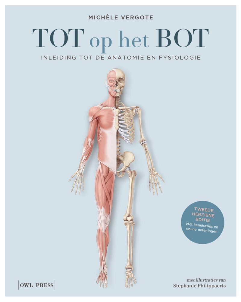 Cover Anatomie 2